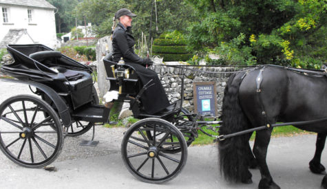 Black-Horse-picking-up-Honeymoon-couple-at-Crumble-Cottage